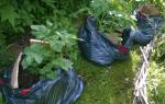Компост в мешках для мусора: инструкция по приготовлению, мнения экспертов и отзывы