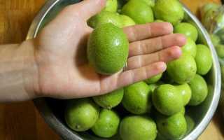 Как быстро отмыть руки после чистки грецких орехов