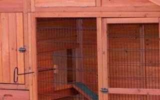 Содержание кроликов в домашних условиях, ямах, вольерах и др.