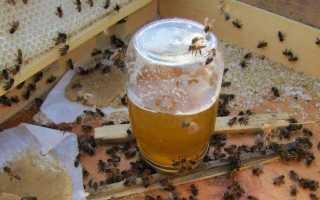 Подкормка пчел сахарным сиропом зимой и летом: пропорции