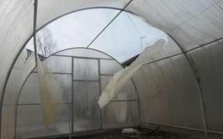 Ремонт теплицы из поликарбоната своими руками после снегопада