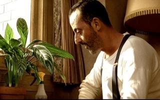 Цветок из фильма Леон и другие растения в кино