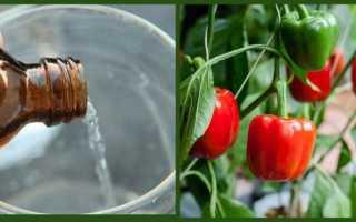 7 аптечных средств от болезней и вредителей растений