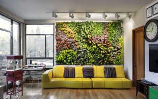 Проблемы, которые может решить вертикальное озеленение
