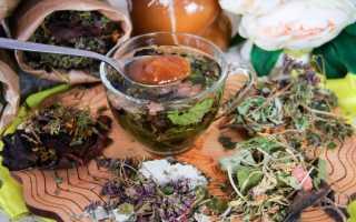 Травы, которые можно заваривать с чаем