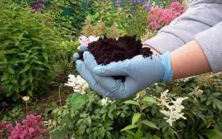Как определить кислотность почвы самостоятельно: по сорнякам, народными и другими средствами, как её изменить