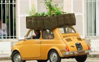 Тест на знание правил посадки садово-огородных культур