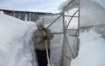 Как очистить теплицу от снега: способы и приспособления