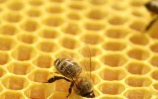 Двухматочное пчеловодство в лежаках — двойной урожай с одного улья + Видео