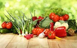 Лунный календарь садовых и огородных работ на 2019 год