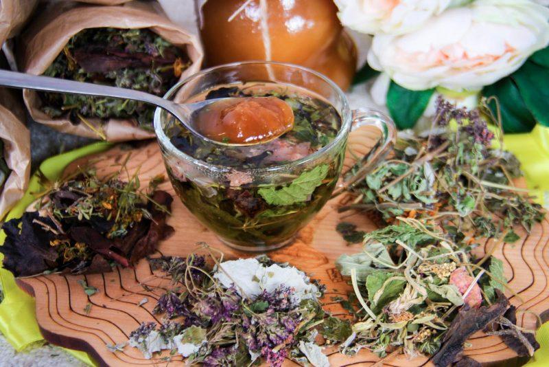 8 лучших трав и кустарников для чая прямо с грядки