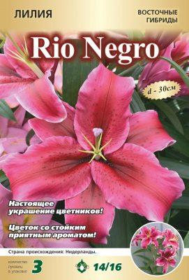 Лилия «Рио Негро»