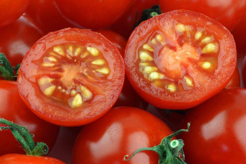 Как подготовить семена томатов к посадке при помощи шприца и алое вера