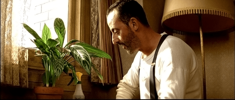 Необычные актёры: цветы из известных фильмов