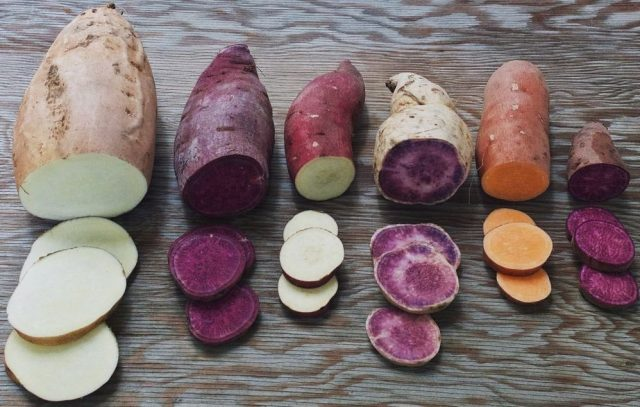 Мякоть у клубней бывает белая, кремовая, жёлтая, оранжевая, розовая, красная и фиолетовая