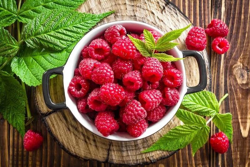 Малиновый рай: что важно сделать весной для получения сладкого урожая