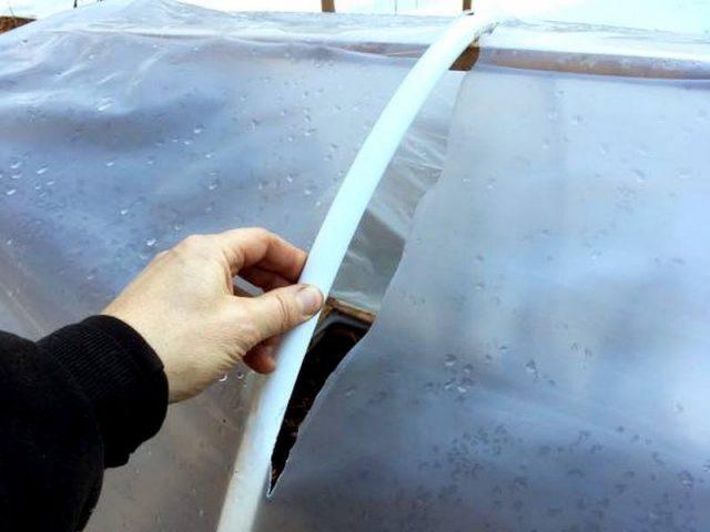 Теплицы и парники в марте нуждаются в основательной предпосевной подготовке — ремонт, очистка, дезинфекция, обработка почвы
