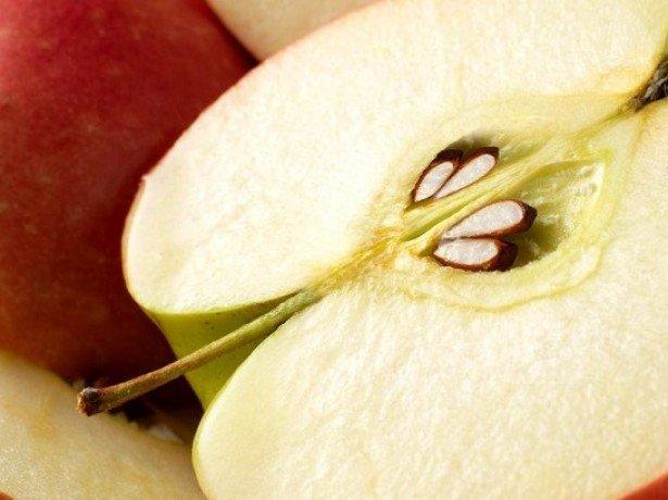 Фото яблока