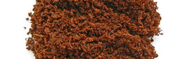 Кокосовый субстрат: как использовать брикеты, таблетки, стружку и волокно