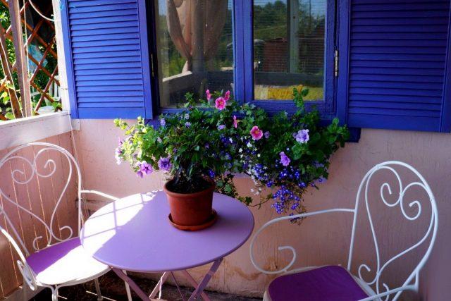 С поздней весны и до поздней осени основу декоративности ансамбля составляют беспрерывно цветущие петунии