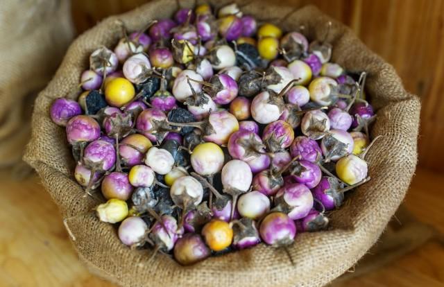 Мини-баклажаны отличаются не только меньшим размером, но и богатой окраской плодов