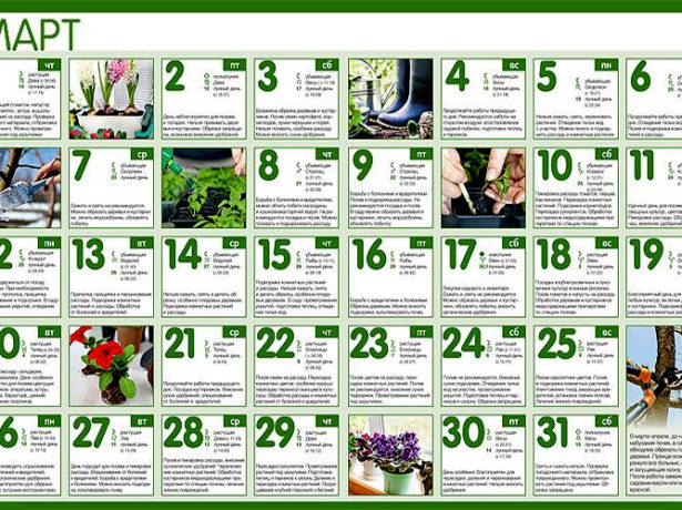 Календарь работ в марте