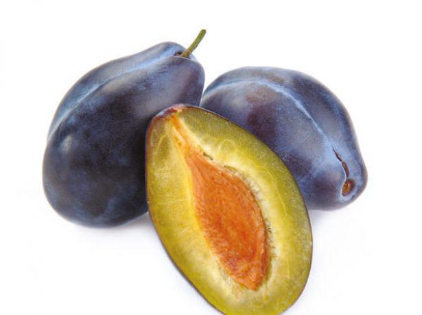 Плод сливы в разрезе
