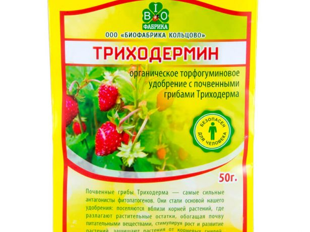 Триходермин
