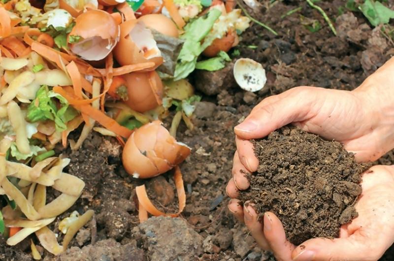 Удобрения своими руками: просто, выгодно, экологично