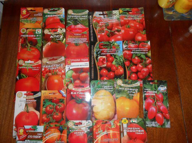 Семена разных сортов томатов
