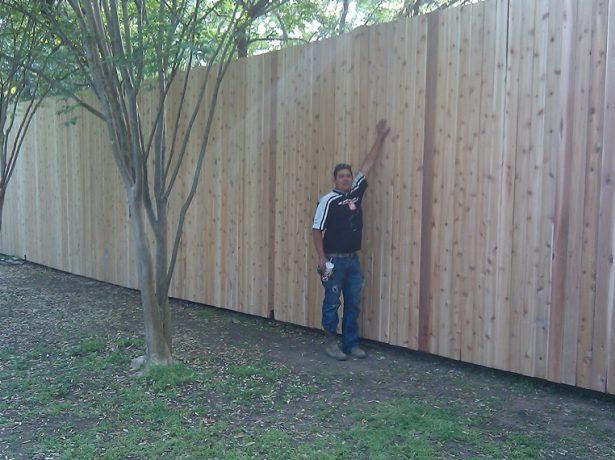 Высокий забор на садовом участке