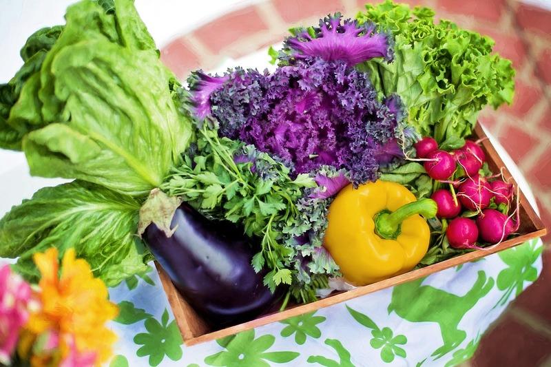 В капле — лекарство, в ложке — яд: удобрения, повышающие количество нитратов в урожае