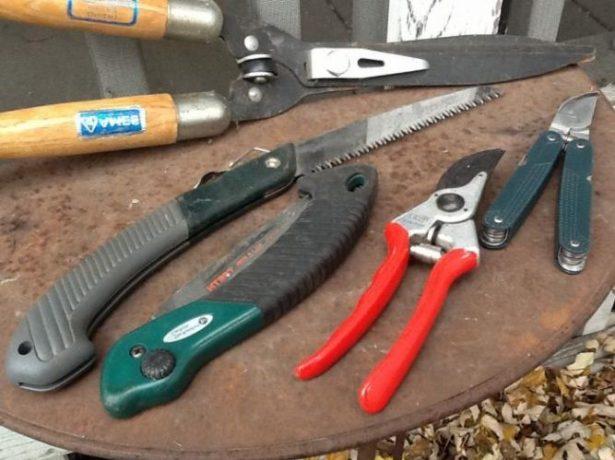Необходимый инструмент для обрезки винограда
