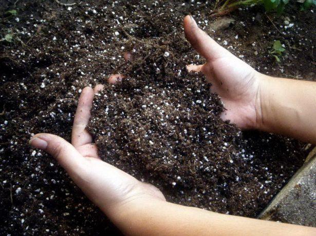 Рыхление почвы руками