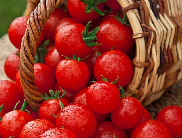 Томаты, перец, огурцы, баклажаны — новые сочные вкусы
