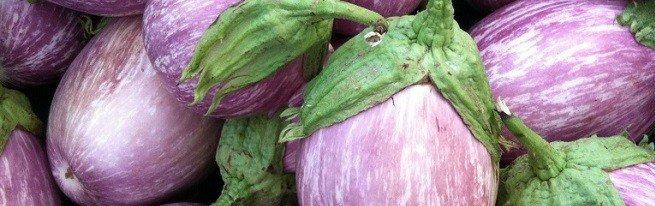 Выбираем лучшие сорта баклажанов от лиловых до белых и зеленых